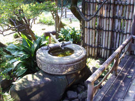 Japanese Well by dandimann46