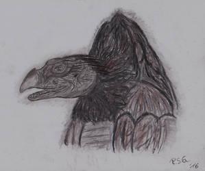 SkekSil charcoal Sketch by Naturgeist93