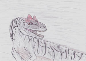 Allosaurus (Gift for Azure)