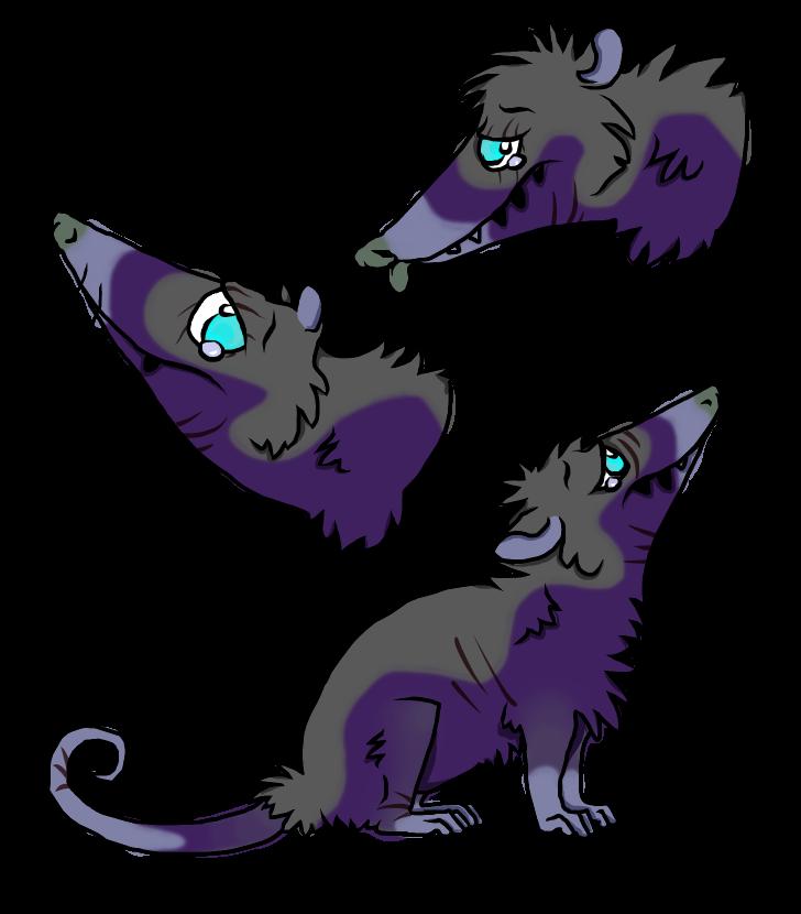 Custom Sad Possum by Darumemay