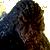 Godzilla1993plz