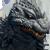 Godzilla2003plz
