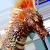 Titanosaurusplz