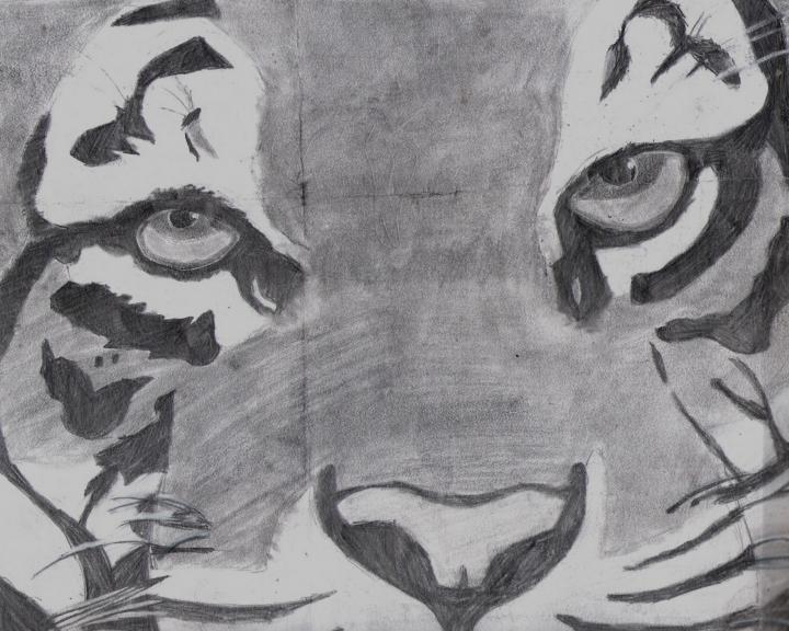 tiger by selftaughtartist1
