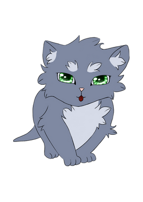 Kitten with the green eyes