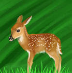 Fawn by selftaughtartist1