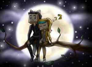 Com: Romantic night