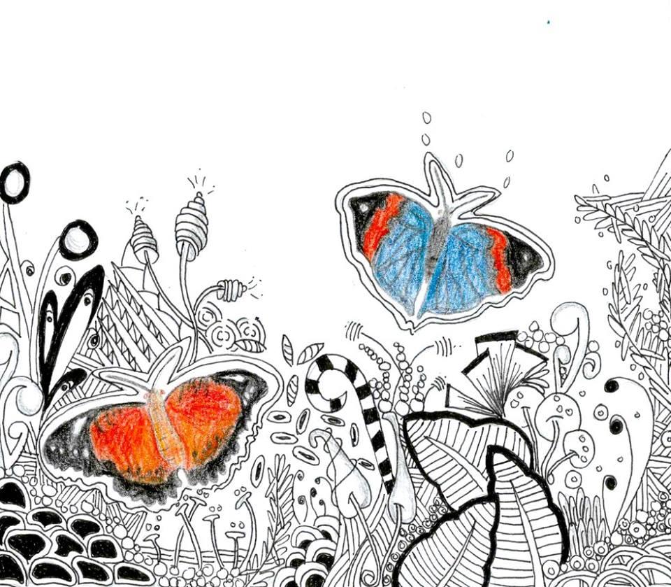 Zenatngle butterflies by ZenStarFox