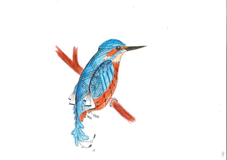 Kingfisher by ZenStarFox