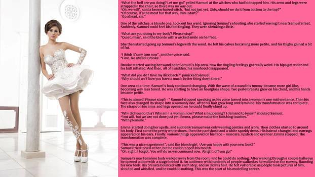 Modeling Career Pt 2 (TG Caption