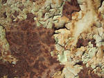 rusty - texture