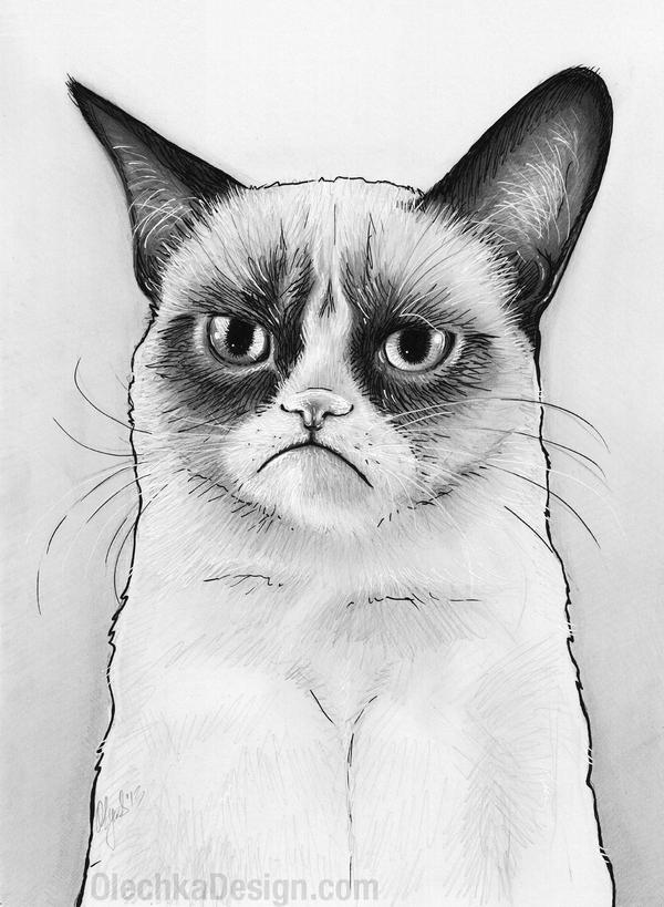 Tard Grumpy Cat Drawing by Olechka01