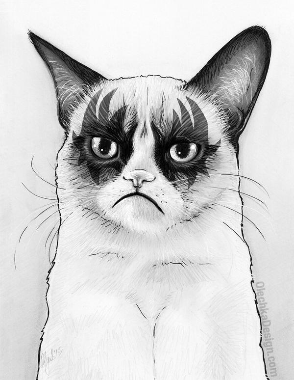 Grumpy Cat Fanart Tard Simmons by Olechka01