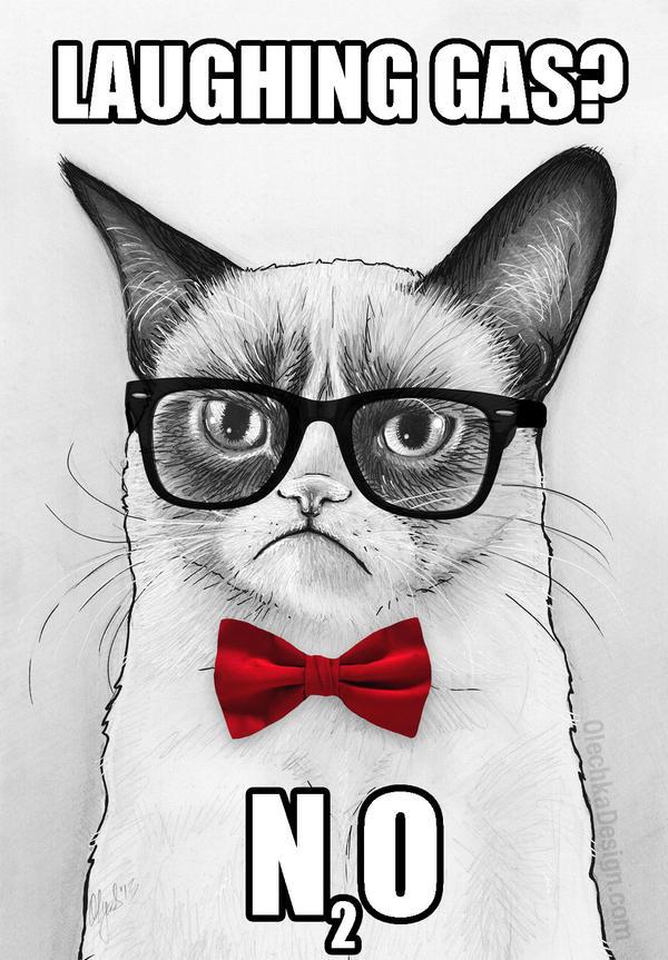 Grumpy Chemistry Cat, Tardar Sauce by Olechka01