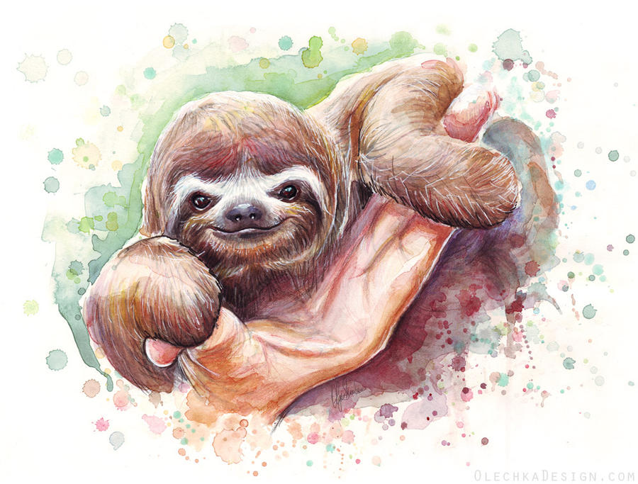 Baby Sloth Watercolor Animal Art By Olechka01 On Deviantart