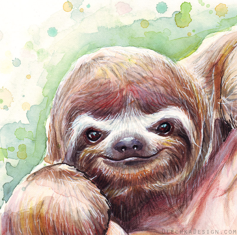 Sloth watercolor detail by olechka01 on deviantart - Sloth wallpaper phone ...
