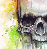 Watercolor Skull Painting (detail) by Olechka01