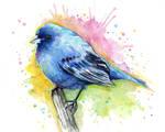 Indigo Bunting Watercolor Illustration