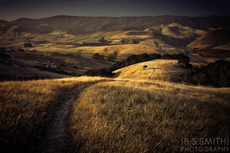 Wherever I Go by novelhill
