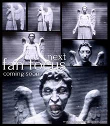Fan Focus - Weeping Angels