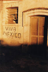 Viva Mexico by STUPIDxochi