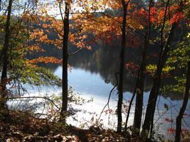 Autumn Beauty 8