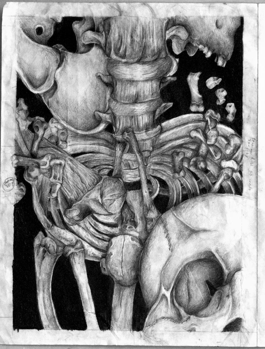 The Bone Room by fenrirhound