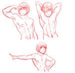 Male Anatomy Practice 1