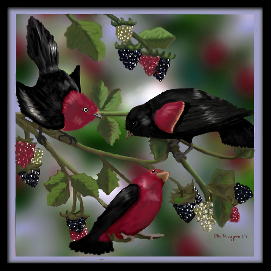 Summer Songbirds by mk-kayem