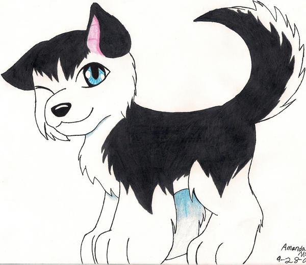 husky puppy: wink by KikiFlamer on DeviantArt Cute Husky Puppy Drawings