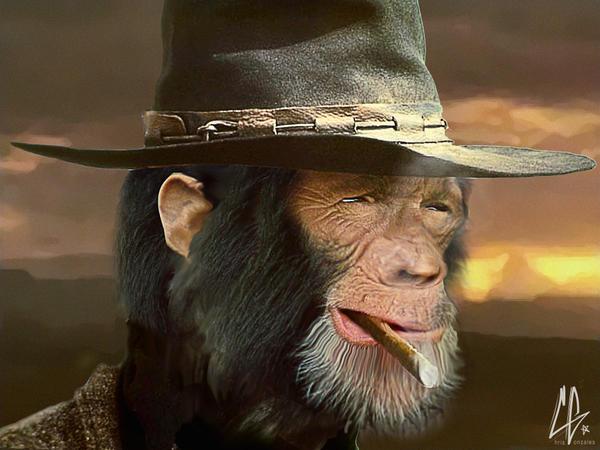 Chimp Eastwood by gunzy1