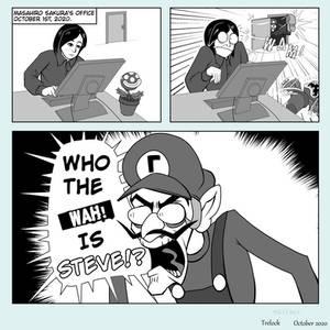 The Next Smash Character