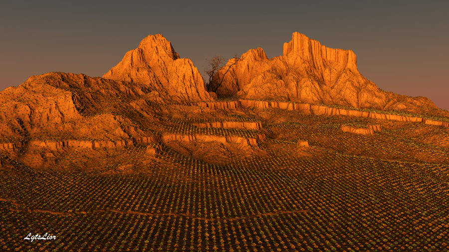Sinai Desert As It Was by Lior-Art