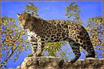 Gorgeous Jaguar by Lior-Art