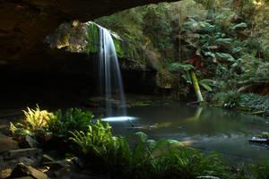 rainforest2 stock by blaisedrew62