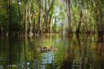 Flooding the River Reds