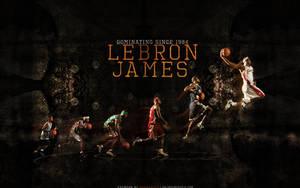 LeBron James by sha-roo