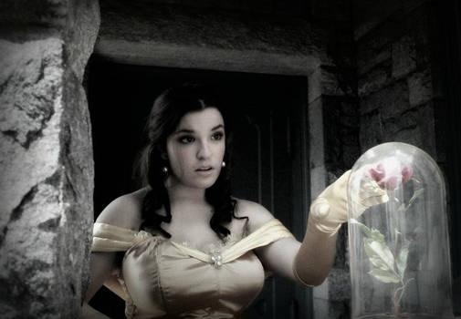 Princess Belle Cosplay - Curiosity
