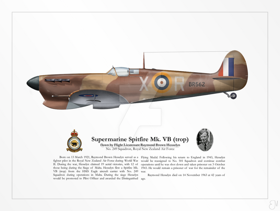 spitfire mk vb trop - photo #11