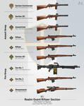 Tiperyn Realm Guard Rifleer Section (1947-1956) by matsudesign
