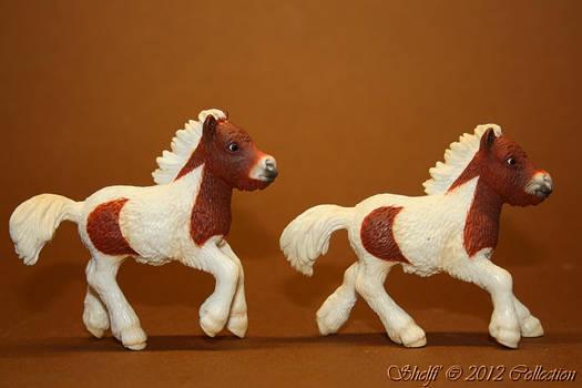 Pony, pony