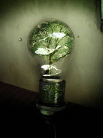 bulb of nature by ryounnin