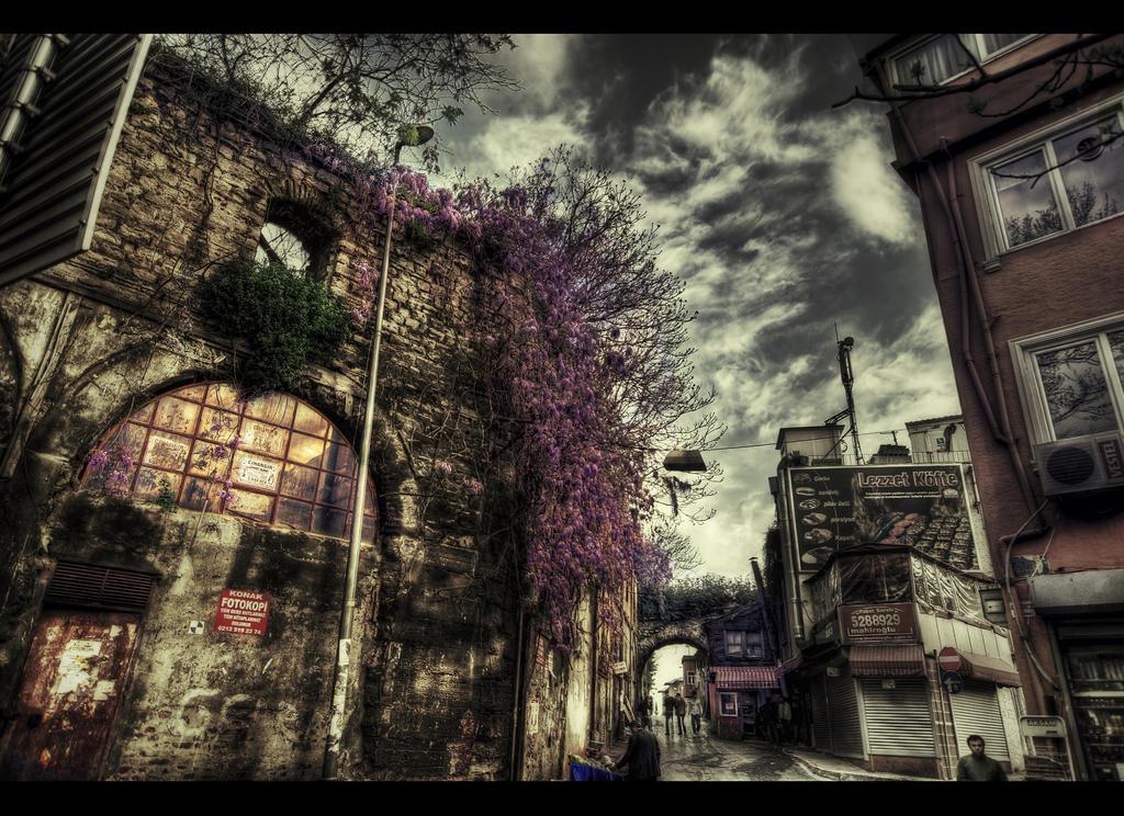 Erguvan Renkli Yillar HDR by ISIK5