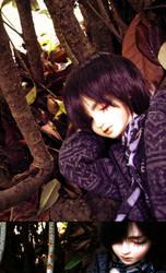 Joshua's Autumn