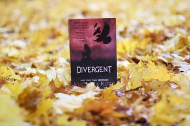 Divergent by PhotosandBooks