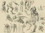 Bird Warrior Sketches 2
