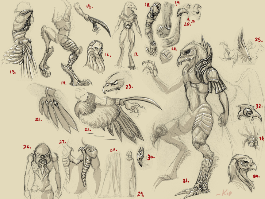 how to draw anthro bodies