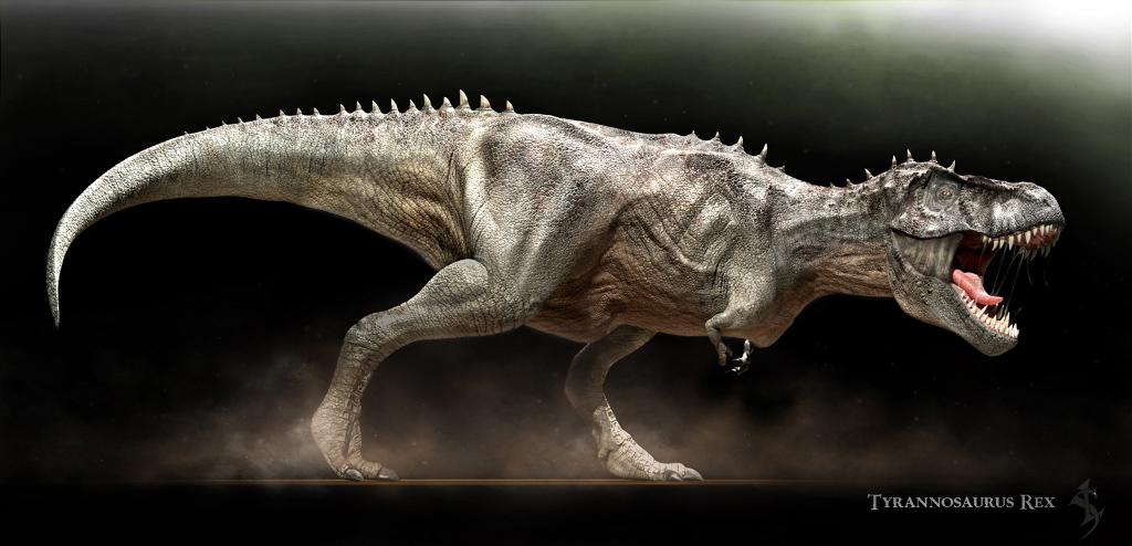 Tyrannosaurus rex by swordlord3d on deviantart for Tyranosaurus