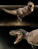 Tyrannosaurus rex_variant 2 by Swordlord3d