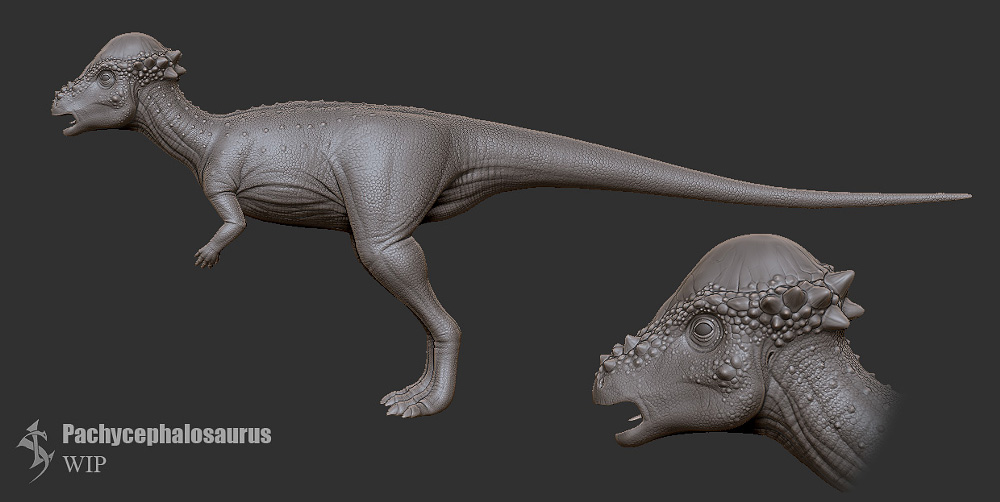 Pachycephalosaurus_WIP by Swordlord3d